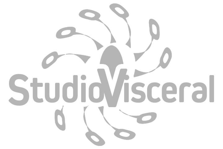 Studio Visceral